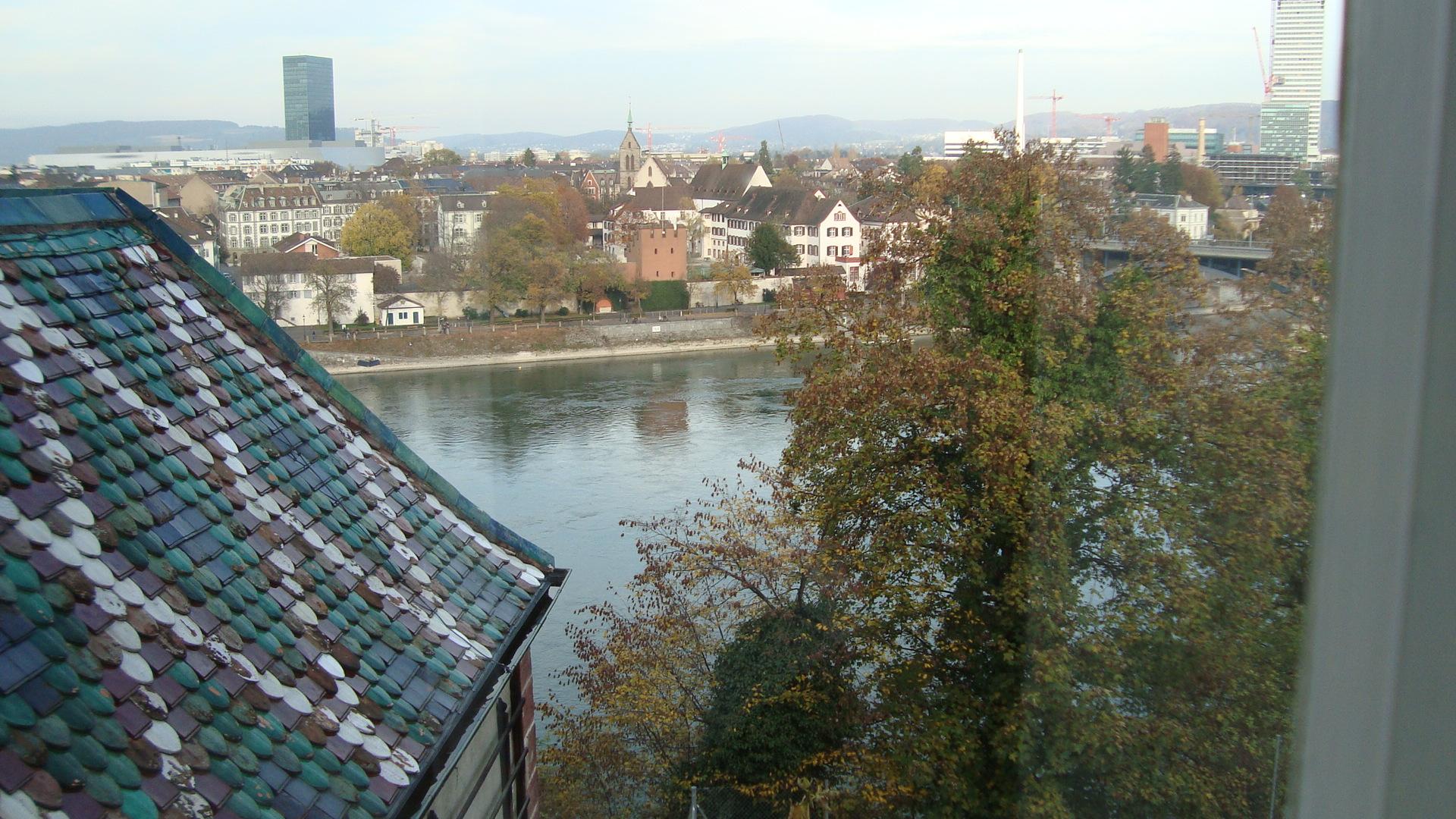 DSC03002_Blick vom Münster auf den Rhein